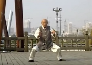 90 year old doing kung fu